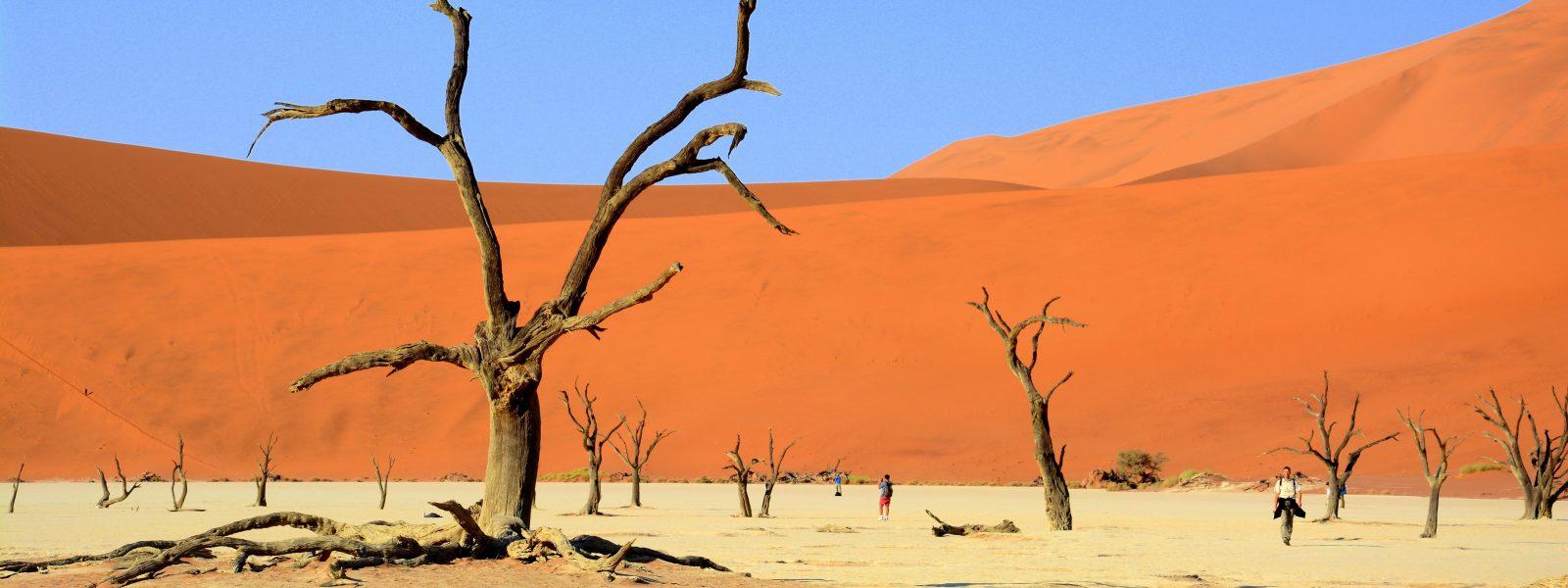Kjer puščava sreča ocean – Namib Naukluft NP